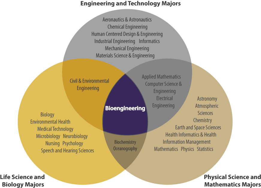 is bioengineering right for me  uw bioengineering 45 degree diagram economics 45 degree diagram economics