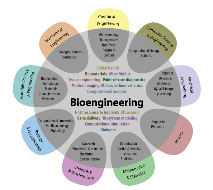 bioengineering and self improvement