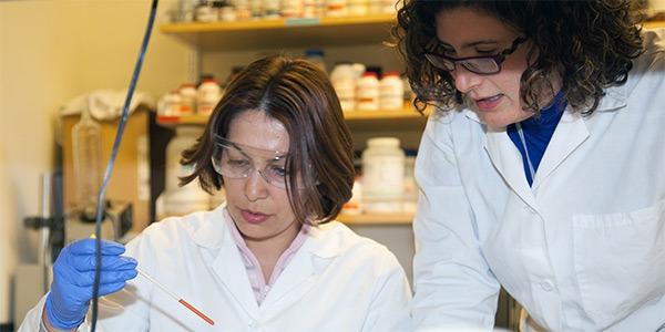 Students examining laboratory result