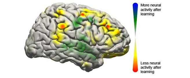 Brain computer interaction image