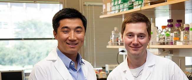 UW Bioengineering assistant professor Dr. Xiaohu Gao and senior fellow Dr. Pavel Zrazehvskiy
