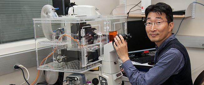 UW Bioengineering assistant professor Dr. Deok-Ho Kim