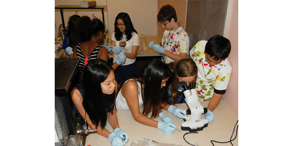 Students at UW Bioengineering's Bloomin Brains Summer Camp