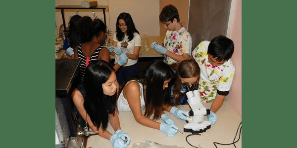 Students at UW Bioengineering's Bloomin Brains Summer Camp
