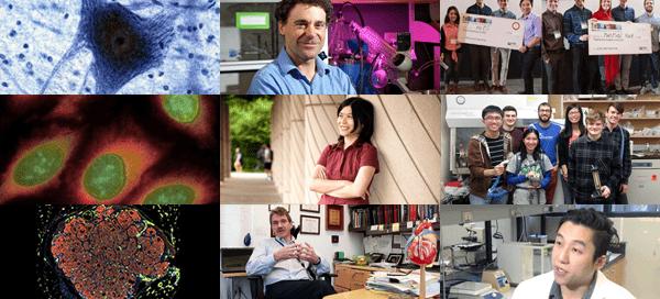 UW Bioengineering eNews