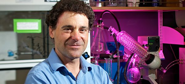 UW Bioengineering Professor Patrick Stayton