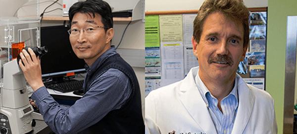 UW Bioengineering faculty Deok-Ho Kim and Charles Murry