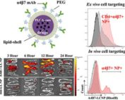 core-shell nanoparticles