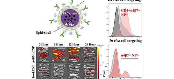 core-shell nanoparticles