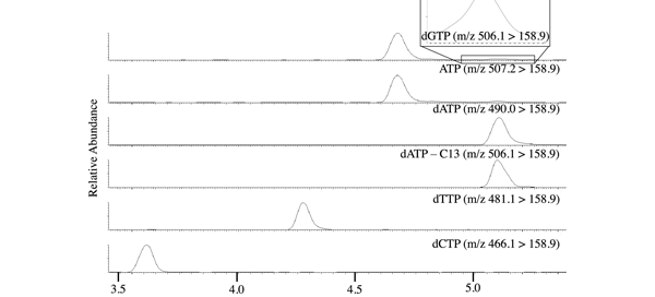 Ion chromatograms showing relative abundance for dGTP, ATP, dATP, labeled C-13 dATP, dTTP, and dCTP upon injection of 62.5 fmol dNTPs, 1250 fmol ATP, and 2.5 pmol of labeled C-13 dATP.