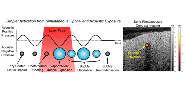 A new contrast agent for combined photoacoustic and ultrasound imaging is presented.