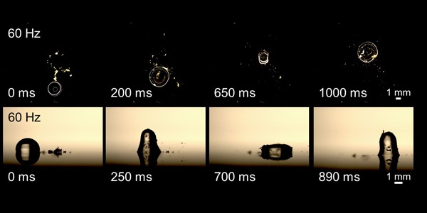 Microfluidic device using droplets of water as a vehicle to deliver a timber sample