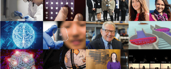 Collage of research images and people featured in issue