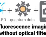 Schematic of fluorescence imaging without optical filters