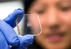 "Researcher examining ""lab on a chip"" system"
