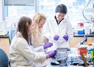 Students working together in a lab