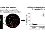 Composite fiber system: Mucus-penetrating nanoparticles encapsulated in mucoadhesive nanofibers. The system demonstrated greater than 30-fold increased nanoparticle retention in reproductive tract at 24 hr.