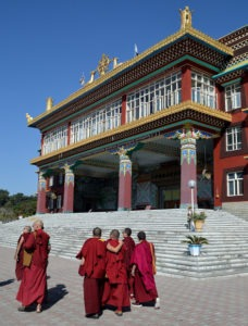 Monks at Sherbaling Monastery