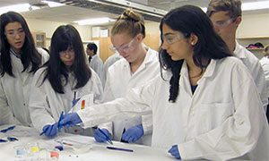 Students participating in BioE Summer Camp